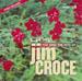 Jim Croce Hits - CDG PSCDG1375