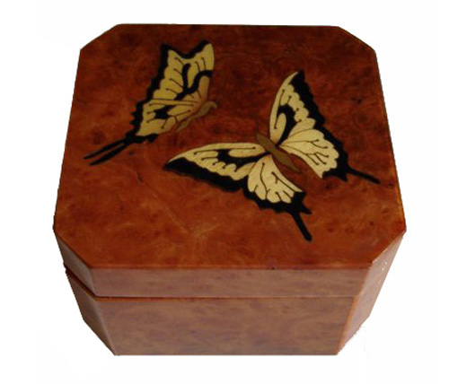 Two butterflies on burled elm music box