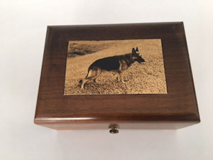 engraved image of German Shepherd on music box