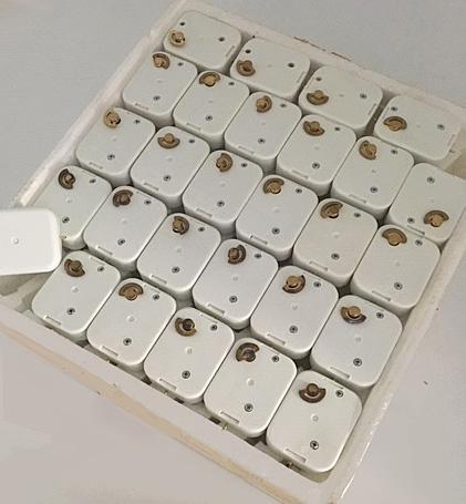 "tray of 52  mini-mechanisms playing ""Tomorrow"""