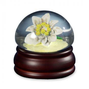 Edelweiss in Mushroom Shaped Water Globe