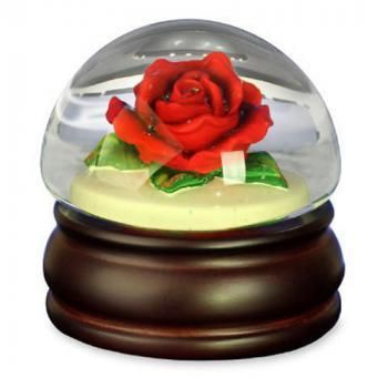 Red Rose in Mushroom Shaped Water Glove