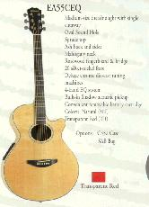 Hohner - Acoustic/Electric Cutaways - Spruce Top