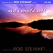 WHAT A WONDERFUL WORLD - Sing The Hits of Rod Stewart  Vol 3